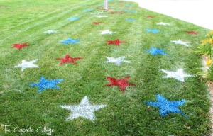 Fourth of July Decor Painted Lawn Stars 3