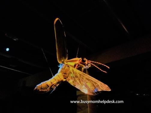 Creatures Light Exhibit
