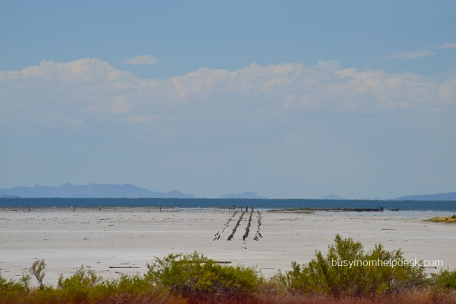 salt lake drive 2