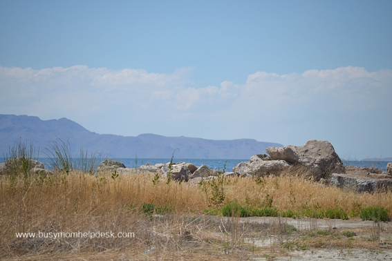 salt lake drive 4